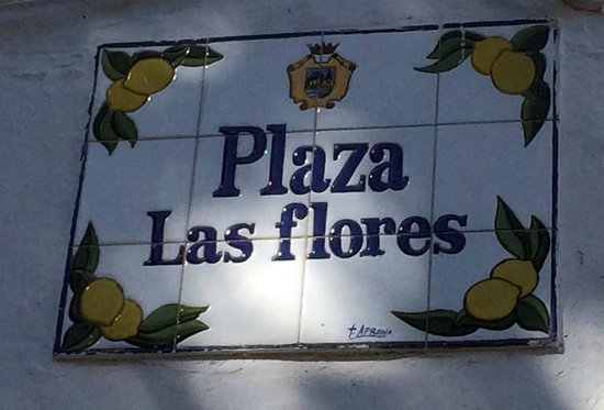 Plaza de las Flores de Estepona : Площадь Цветов