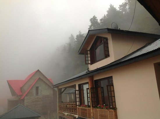 Mahasu House: Surrounded by Pine and Deodar forest