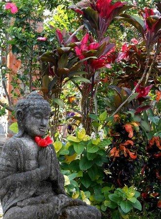 Jati 3 Bungalows: hotel garden