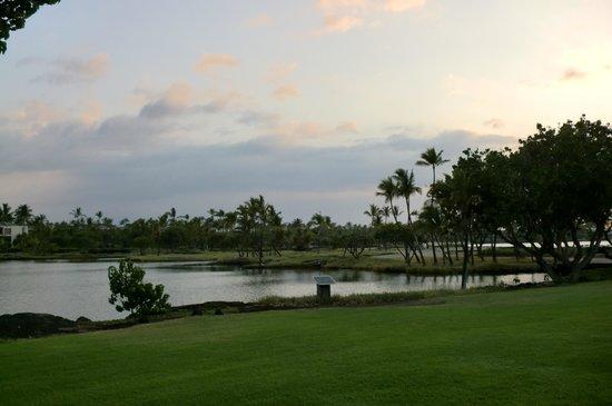 Mauna Lani Resort Golf Club: ゴルフコース