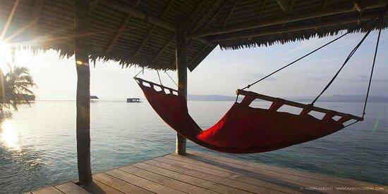 Kri eco resort campground reviews raja ampat indonesia tripadvisor - Raja ampat dive resort reviews ...