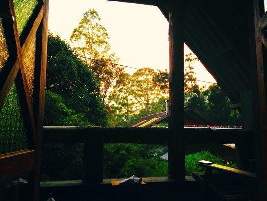 King Fern Cottage : Blick aus dem Zimmer Nr. 6