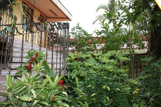Hotel Cafe Jinotega : Patio interior