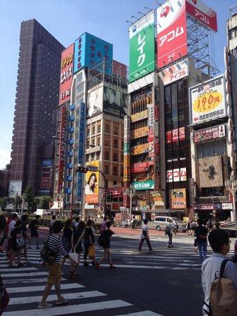Shinjuku West Exit Camera Town: Shinjuku