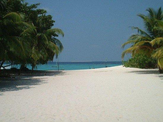 Haa Alif Atoll: Beach 01