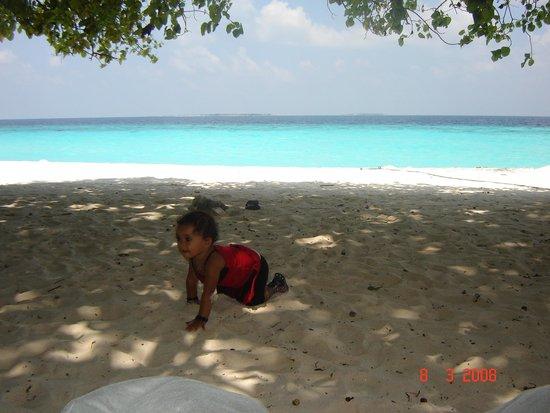 Haa Alif Atoll: Beach