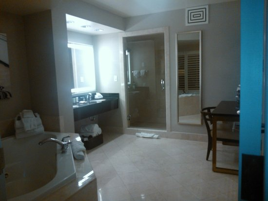 Hilton Sandestin Beach, Golf Resort & Spa: Bathroom - excellent!
