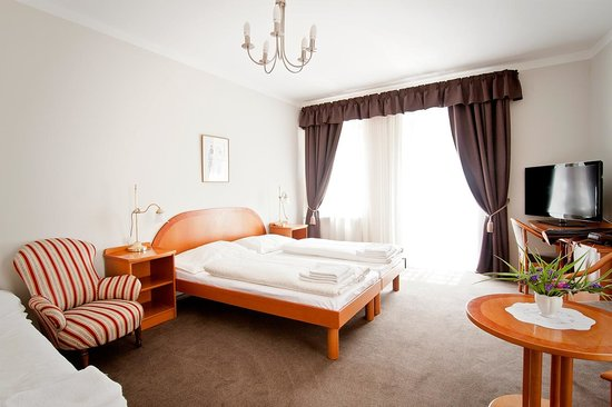 Photo of Hotel U Solne Brany Ceske Budejovice