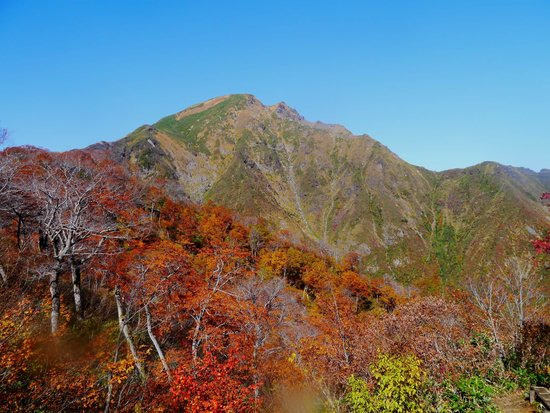 Tanigawadake: 紅葉の谷川岳は素晴らしいです。
