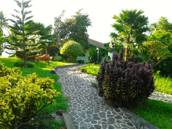 the beautiful landscape around volcan daan bed and breakfast
