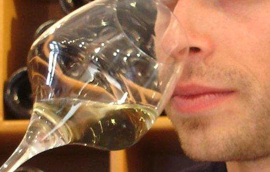 Sensation Vin: Sentir le vin
