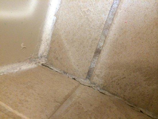 Great Wolf Lodge: Bathroom Floor