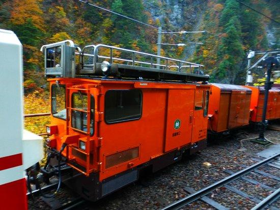 黒部峡谷トロッコ電車, トロッコ列車
