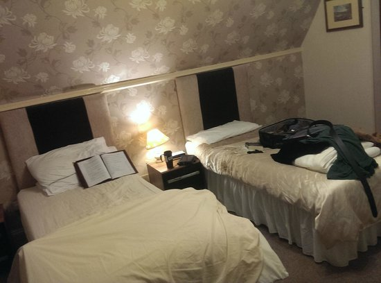 Eryl Mor Hotel : Twin room