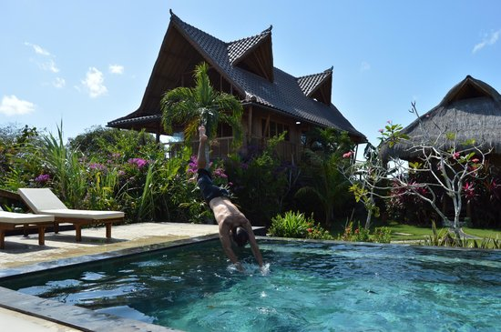 Merta Sari Bungalow: piscina