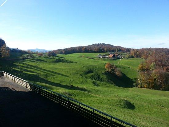 Läufelfingen, Suiza: La vue