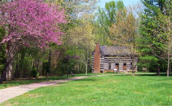 ‪Atkinson-Griffin Log House-Confederate Hospital‬