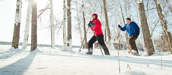 Snowshoeing in Traverse City