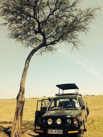 Olowuaru Keri Mara Camp: On Safari!
