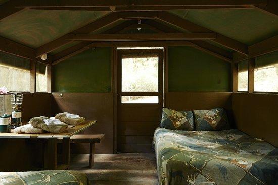 Exceptional Big Basin Tent Cabins