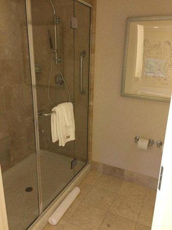 The Westin Palo Alto : Shower