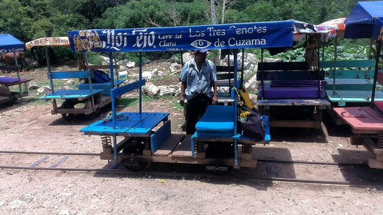 Cuzama Sinkhole Tour - Best Day Travel (Day Tour): The cart