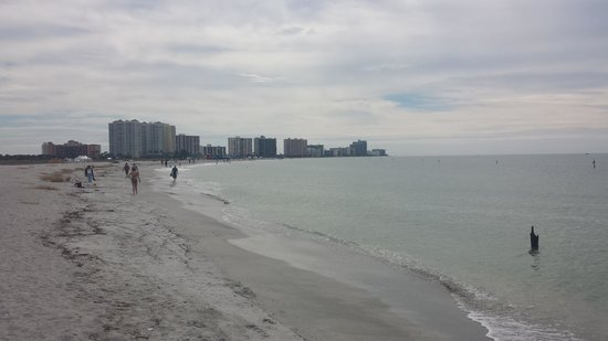 Sheraton Sand Key Resort: Long beach to take walks - Sheraton is furthest on the left
