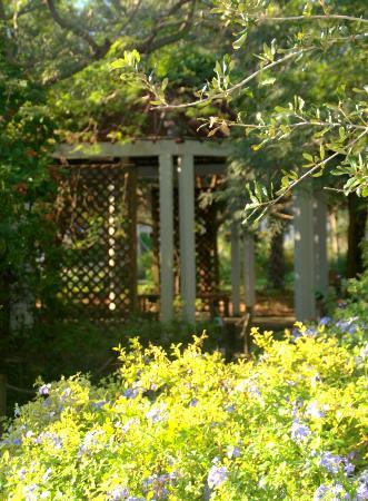Robert J Huckshorn Arboretum