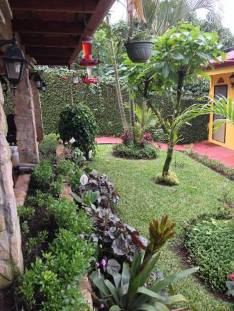 La Terraza Guest House B&B: breakfast on the patio watching the hummingbirds visit the feeders