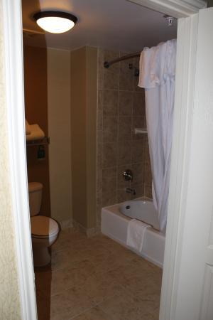 Homewood Suites by Hilton Agoura Hills: Shower