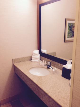 Fairfield Inn & Suites Germantown Gaithersburg : Bathroom