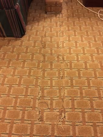"""Rodeway Inn & Suites : """"Newly renovated room"""" they said. Lol!  Don't cut your foot on the raw subfloor under the """"patc"""