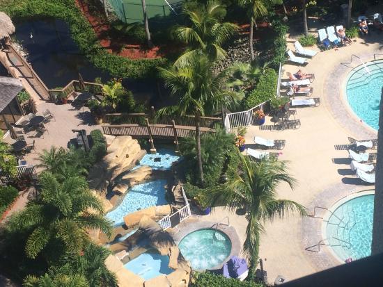 Pointe Estero Beach Resort : view 1