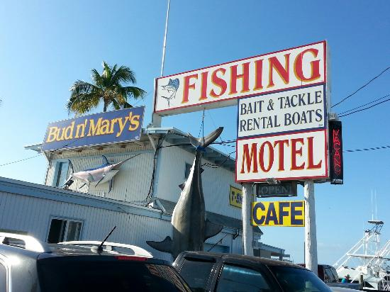 Miss Islamorada Charter Fishing: Bud & Mary's / Lady Islamorada Party Boat Fishing at Mile Marker 79, Atlantic side...