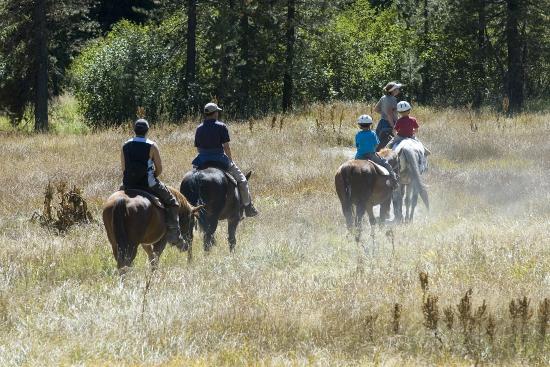 写真Drakesbad Guest Ranch枚