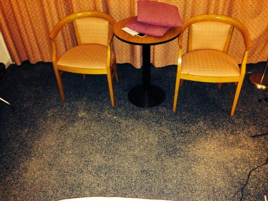 Apollo Hotel Lelystad City Centre : Old dirty carpet
