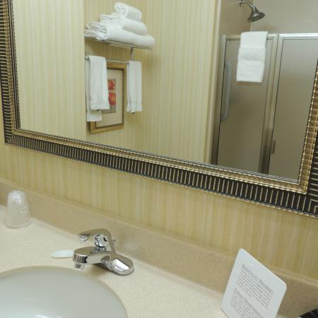 Holiday Inn Express Suites Chehalis - Centralia: bathrooms very clean