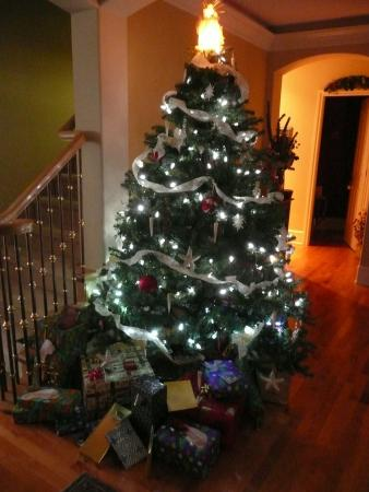 Mainstay Oasis Bed and Breakfast : Christmas magic