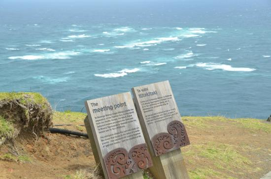 Sand Safaris Cape Reinga 90 Mile Beach Tours: meeting of the two seas