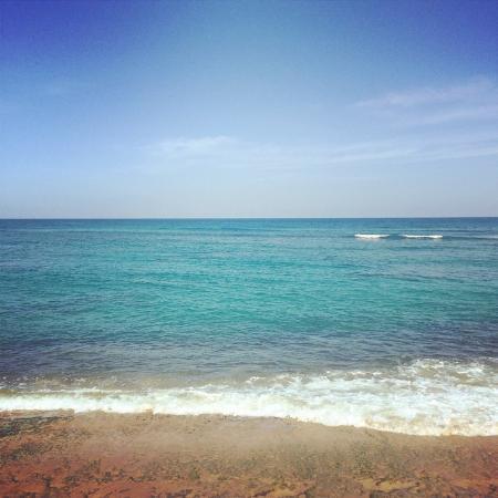 Villa Shacks : Ocean