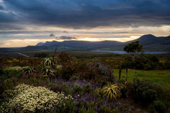 Farm 215 Nature Retreat & Fynbos Reserve: View from Farm 215 at sunset