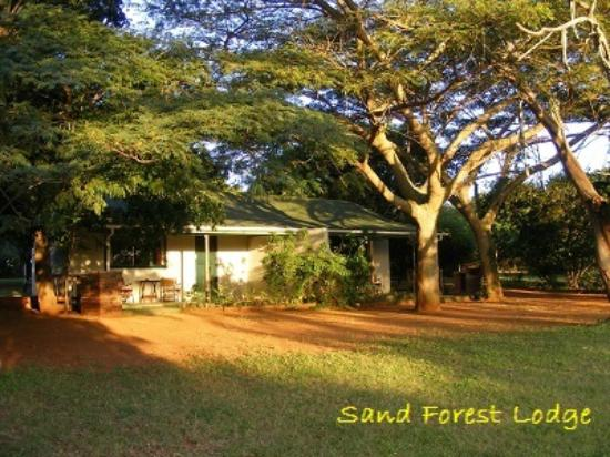 Sand Forest Lodge: Hoopoe