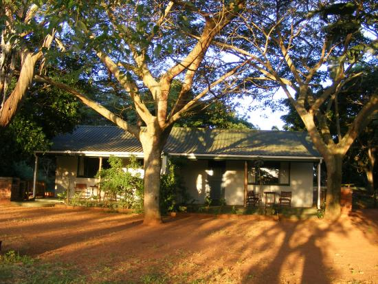 Sand Forest Lodge: Guinefowl