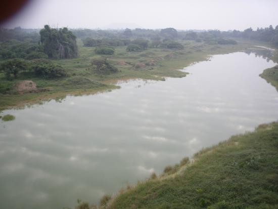 Vedanthangal Bird Sanctuary : see for yourself