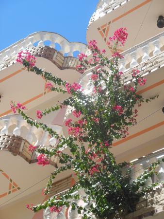 Cleopatra Hotel Luxor: Hotel building