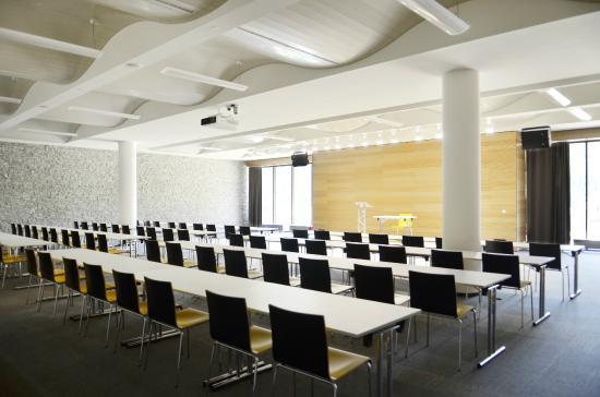 Wellness Hotel Vista: Konferenční místnost