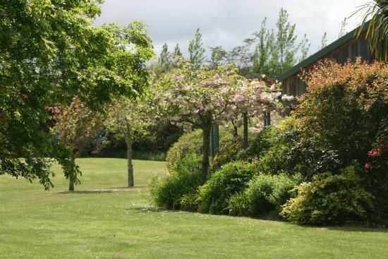 Whakaipo Lodge : Amazing gardens