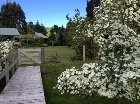 Whakaipo Lodge : Amazing gardens - spring at its best