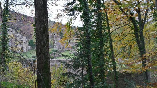 Le Morimont : les ruines du château de Morimont à 500m