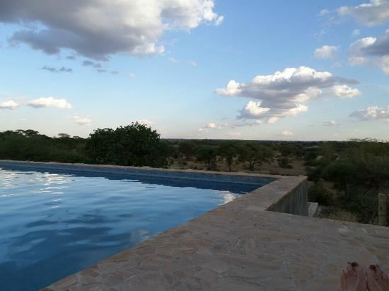 Osupuko Lodge : Pool with a view